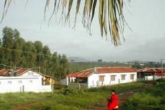 28_20083